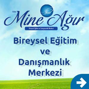 Adana Otizm,Eba Terapisi